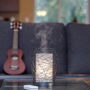 enduringdecor_desert_livingroom