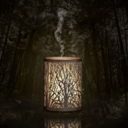 EnduringDecor_Forest_Main